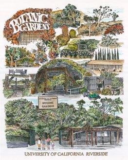 ART UCR Botanic Gardens